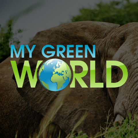 MyGreenWorld
